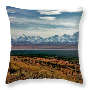 Throw Pillow featuring the photograph Denali Colors by Jeremy Rhoades