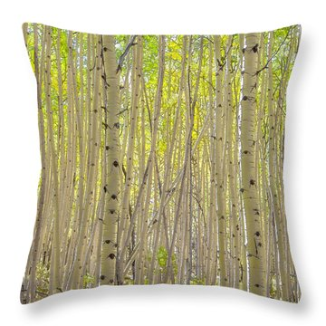 Dense Aspen Throw Pillow