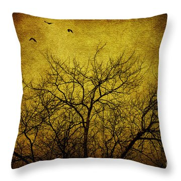 Departed Throw Pillow by Andrew Paranavitana