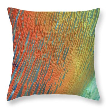 Desert Abstract Throw Pillow by Jennifer Rondinelli Reilly - Fine Art Photography