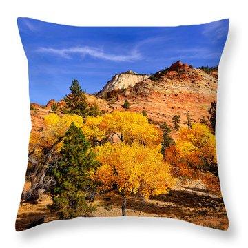 Throw Pillow featuring the photograph Desert Autumn by Greg Norrell