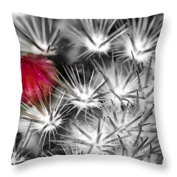 Desert Bloom Bw Throw Pillow