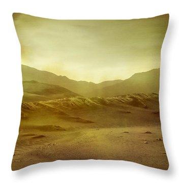 Desert Throw Pillow by Brett Pfister