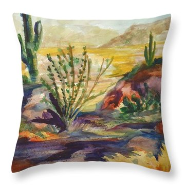 Desert Color Throw Pillow