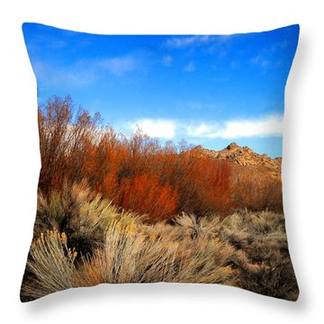 Throw Pillow featuring the photograph Desert Colors by Marilyn Diaz