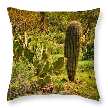 Throw Pillow featuring the photograph Desert Dream by Mark Myhaver