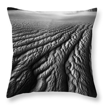 Desert Dreaming 1 Of 3 Throw Pillow