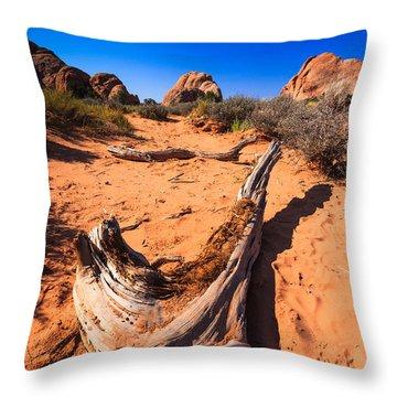Desert Driftwood Throw Pillow by Jonathan Gewirtz