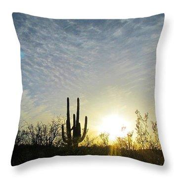 Throw Pillow featuring the photograph Desert Dusk by Brenda Pressnall