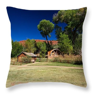 Throw Pillow featuring the photograph Desert Field by Dave Files