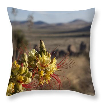 Desert Flowers Throw Pillow by Amber Kresge