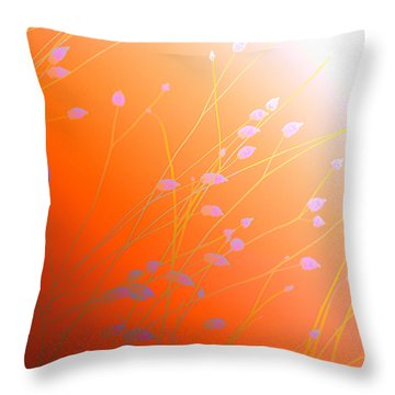 Throw Pillow featuring the photograph Desert Flowers by Holly Kempe