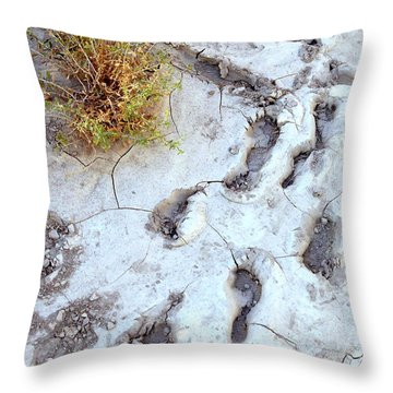 Desert Footprints Throw Pillow