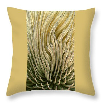 Desert Green Throw Pillow by Ben and Raisa Gertsberg