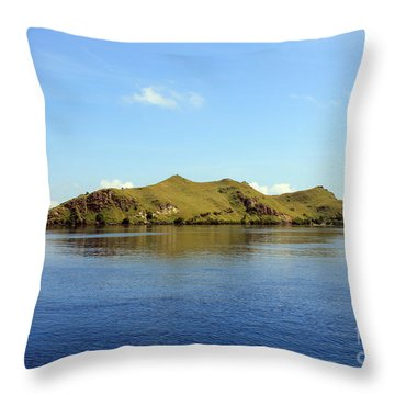 Desert Island Throw Pillow by Sergey Lukashin