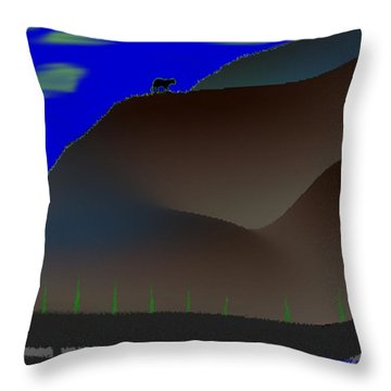 Desert Night Throw Pillow