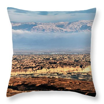 Desert Panorama Throw Pillow by Arik Baltinester