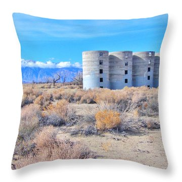 Desert Quartet Throw Pillow