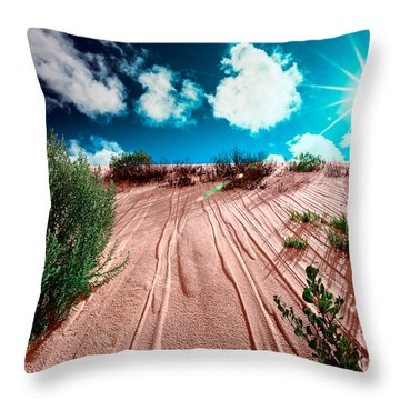 Desert Rays Throw Pillow