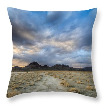 Throw Pillow featuring the photograph Desert Road by Dustin  LeFevre