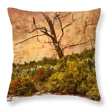 Desert Rose Throw Pillow by Debra and Dave Vanderlaan