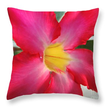 Desert Rose		 Throw Pillow