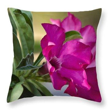 Desert Rose  Throw Pillow by Saija  Lehtonen