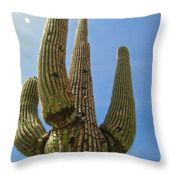 Throw Pillow featuring the photograph Desert Sentinel  by Brenda Pressnall
