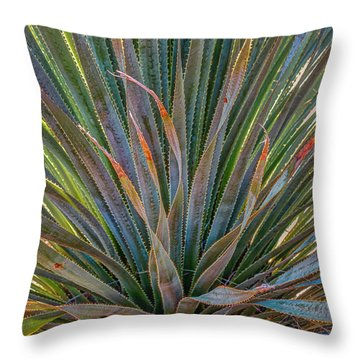 Desert Spoon Throw Pillow by Beverly Parks