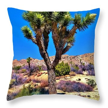 Desert Spring Throw Pillow by Angela J Wright