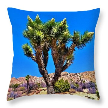 Desert Spring Throw Pillow