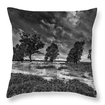 Desert Storm Throw Pillow by Arik Baltinester