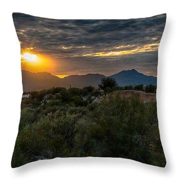 Throw Pillow featuring the photograph Desert Sunset by Dan McManus