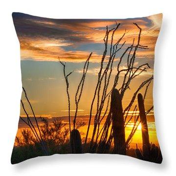 Desert Sunset Throw Pillow by Fred Larson