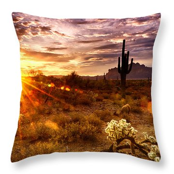 Desert Sunshine  Throw Pillow