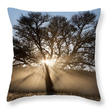 Desert Tree Throw Pillow by Max Waugh