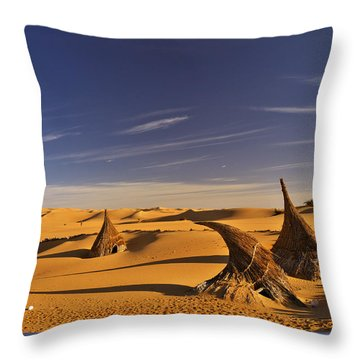 Desert Village Throw Pillow