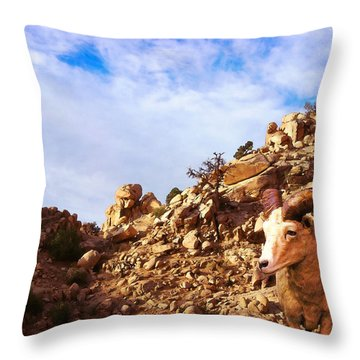 Desert Wilderness Throw Pillow by Timothy Bulone