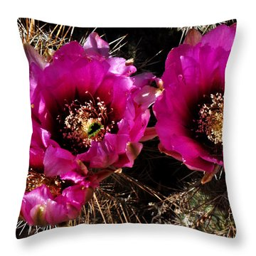 Desert Wildflower Throw Pillow by Diane Lent