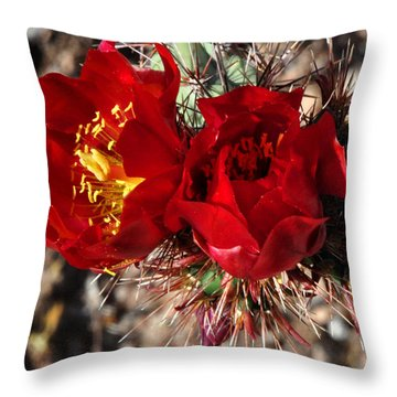 Desert Wildflowers Throw Pillow by Diane Lent