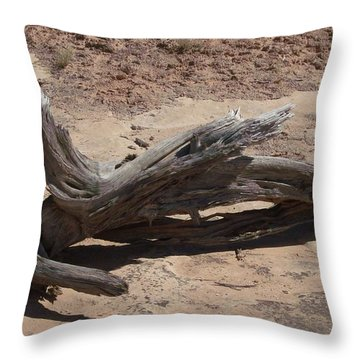 Throw Pillow featuring the photograph Desert Wildwood by Fortunate Findings Shirley Dickerson