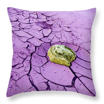 Throw Pillow featuring the painting Desert Winter by Dan Redmon