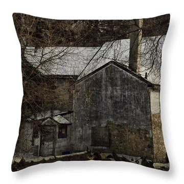 Deserted 2 Throw Pillow by Judy Wolinsky