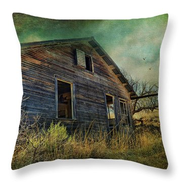 Deserted Throw Pillow by Barbara Manis