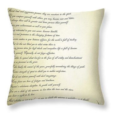Desiderata 2 Throw Pillow by Teresa Zieba