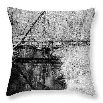 Desolate Throw Pillow by Art Dingo