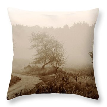 Desolation  Throw Pillow