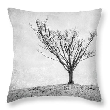 Reach Throw Pillows