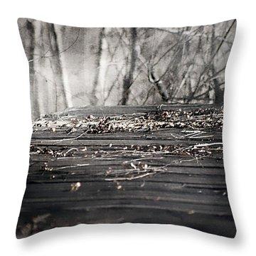 Destiny  Throw Pillow by Debra Forand