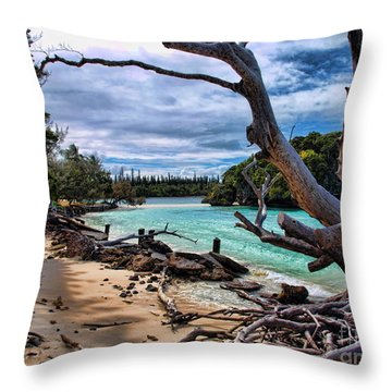 Throw Pillow featuring the photograph Destruction by Trena Mara